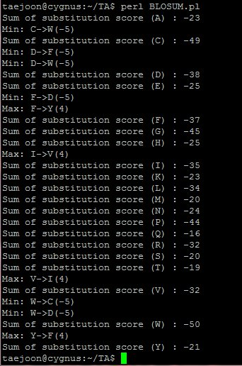perl assign empty array